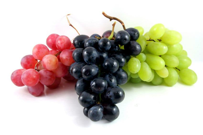 escolher frutas