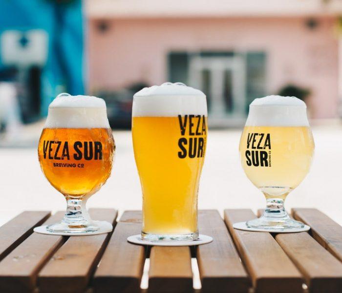 Conheça os vários Tipos de Cerveja
