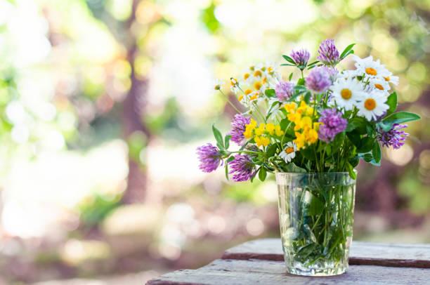 Como manter as flores bonitas por mais tempo 2